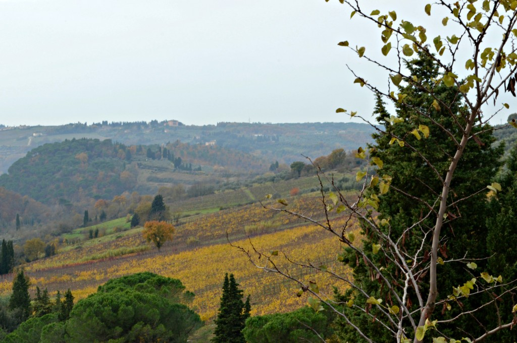A Stop in Tuscany