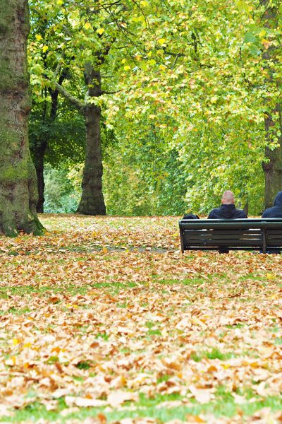 What to do in London when visiting in the fall